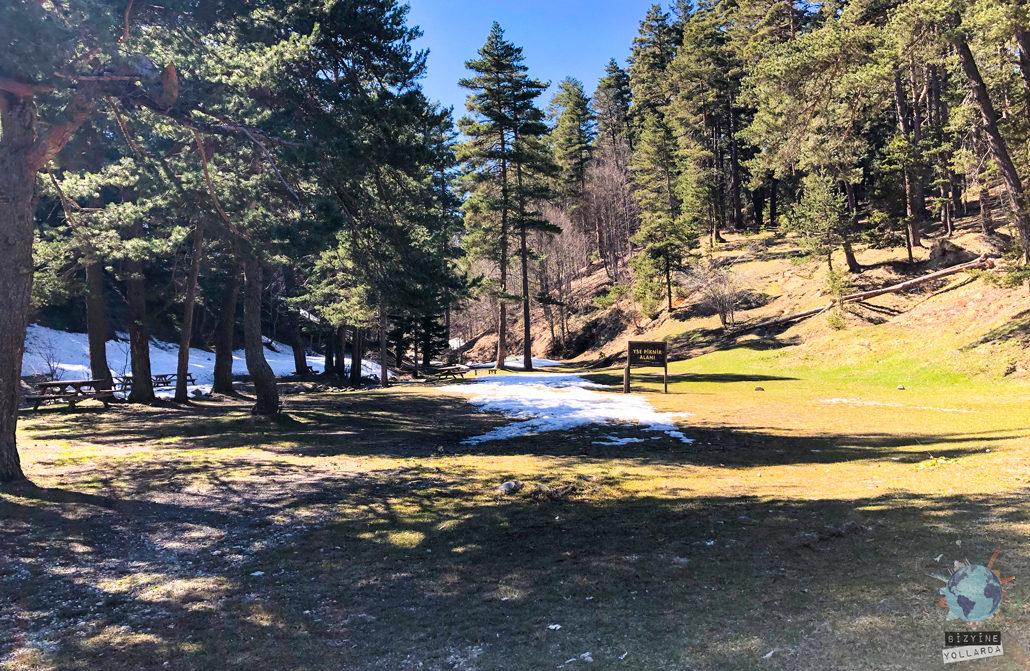 Abant' ta piknik yapılacak alanlar