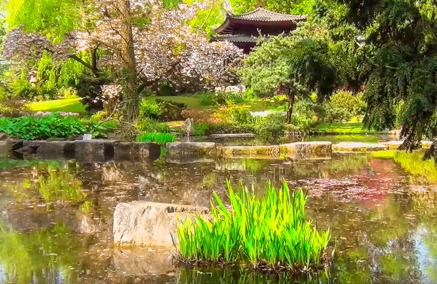 Almanya Köln Japon Bahçesi