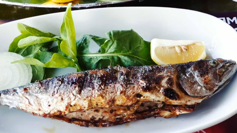 Balık Izgara menüler ve deniz mahsülleri menüsü.