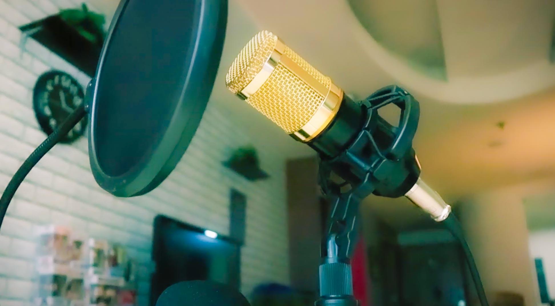 Sesli Yayın Mikrofonu